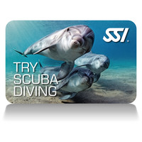 try scuba diving buffalo ny